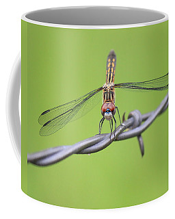 Coffee Mug featuring the photograph Dragonfly On Barbed Wire by Penny Meyers
