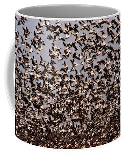 Duck Wall Coffee Mug