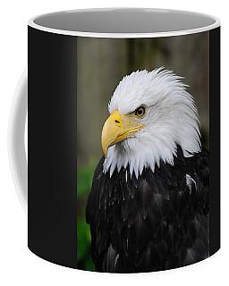 Eagle In Ketchikan Alaska 1371 Coffee Mug