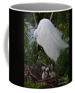 Coffee Mug featuring the photograph Egret With Chicks by Art Whitton