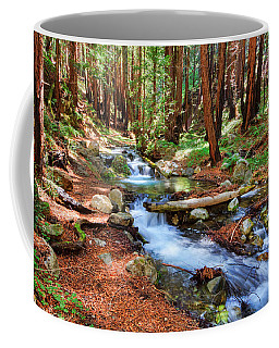 Coffee Mug featuring the photograph Enchanted Forest by Beth Sargent