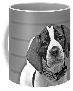 English Pointer Puppy Black And White Coffee Mug