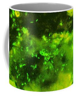 Escherichia Coli, Dfa Stain Coffee Mug