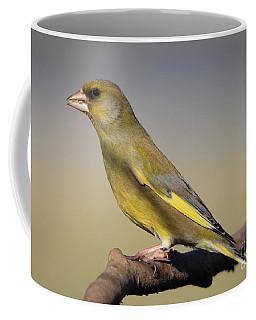 European Greenfinch Coffee Mug