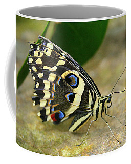 Eye To Eye With A Butterfly Coffee Mug