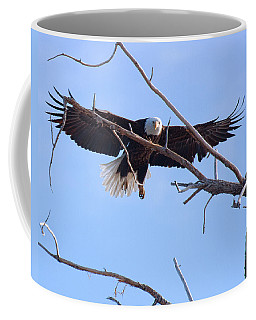 Coffee Mug featuring the photograph Eyes On The Prize by Jim Garrison