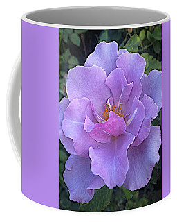Faery Princess Coffee Mug