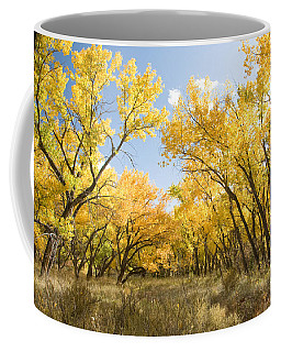 Fall Leaves In New Mexico Coffee Mug
