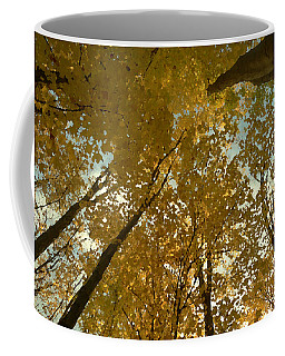 Fall Scene Coffee Mug