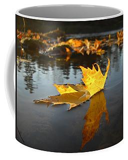 Fallen Maple Leaf Reflection Coffee Mug