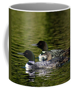 Family Swim Coffee Mug by Steven Clipperton