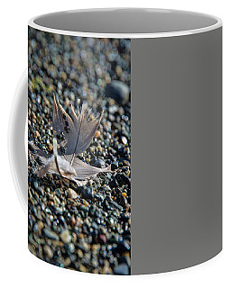 Coffee Mug featuring the photograph White Feather by Marilyn Wilson