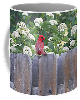 Coffee Mug featuring the photograph Fence Top by Elizabeth Winter
