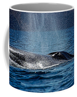 Coffee Mug featuring the photograph Fin Whale Spouting by Don Schwartz