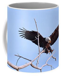 Coffee Mug featuring the photograph Final Approach by Jim Garrison