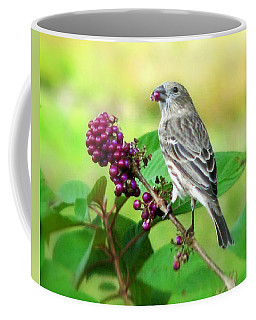 Finch Eating Beautyberry Coffee Mug