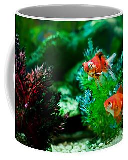 Coffee Mug featuring the photograph Fish Tank by Matt Malloy