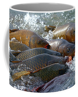 Coffee Mug featuring the photograph Fishing And Hunting by Elizabeth Winter
