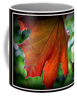Fleeting Coffee Mug by Priscilla Richardson