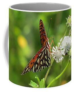 Florida Butterfly Coffee Mug
