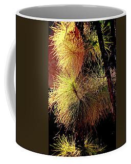 Florida Tree Coffee Mug