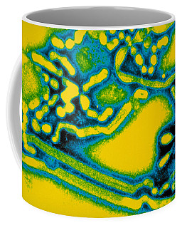 Flu Virus A Coffee Mug