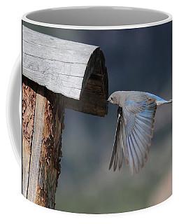 Flying Around Coffee Mug