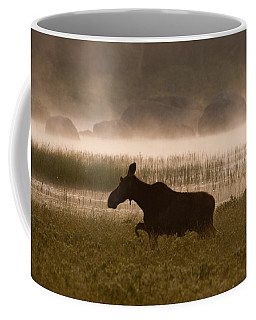 Foggy Stroll Coffee Mug by Brent L Ander