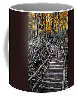 Footpath In Mangrove Forest Coffee Mug