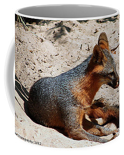 Coffee Mug featuring the photograph Foxie by Debra Forand