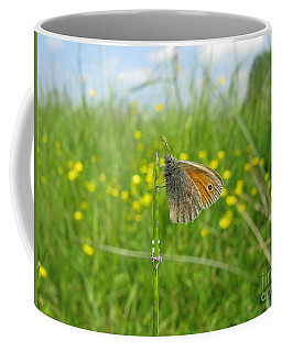 Coffee Mug featuring the photograph Fragile Beauty #02 by Ausra Huntington nee Paulauskaite