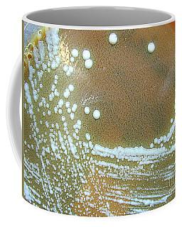 Francisella Tularensis Culture Coffee Mug