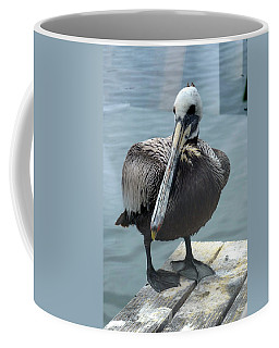 Coffee Mug featuring the photograph Friendly Pelican by Carla Parris