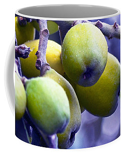 Sicilian Fruits Coffee Mug