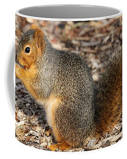 Coffee Mug featuring the photograph Fruity Squirel by Elizabeth Winter