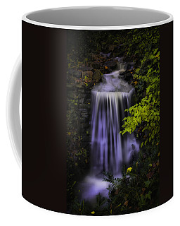 Coffee Mug featuring the photograph Garden Falls by Lynne Jenkins