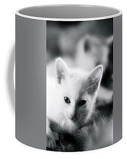 Ghost Kitties Coffee Mug