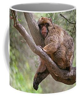 Gibraltar Barbary Macaque Coffee Mug
