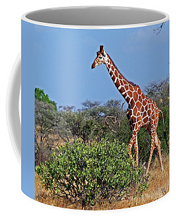 Giraffe Against Blue Sky Coffee Mug