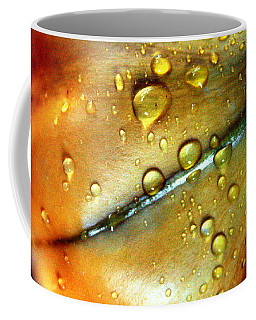 Golden Cup Flower Study 3 Coffee Mug
