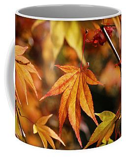 Coffee Mug featuring the photograph Golden Fall. by Clare Bambers