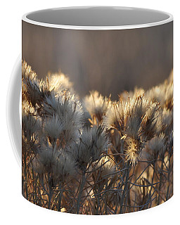 Coffee Mug featuring the photograph Gone To Seed by Fran Riley
