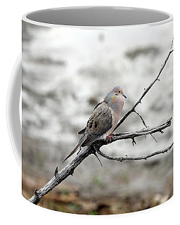 Coffee Mug featuring the photograph Good Morning Dove by Elizabeth Winter