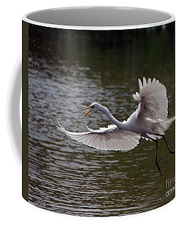 Coffee Mug featuring the photograph Great Egret In Flight by Art Whitton