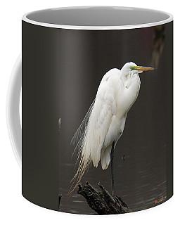 Great Egret Resting Dmsb0036 Coffee Mug