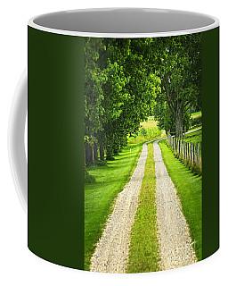 Gravel Path Coffee Mugs