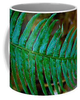 Coffee Mug featuring the photograph Green Fern by Tikvah's Hope