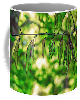 Green Redbud Seed Pods Coffee Mug