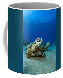 Green Sea Turtle Couple Coffee Mug