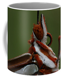 Coffee Mug featuring the photograph Gulf Fritillary Butterfly Portrait by Daniel Reed